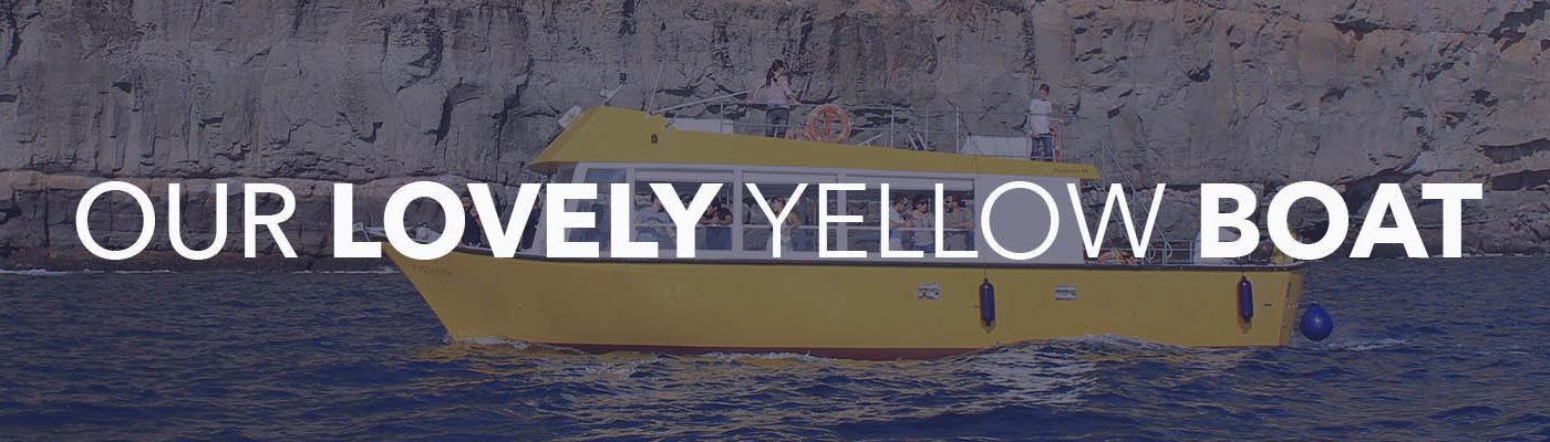 About Us - Yellow Boat Mogan