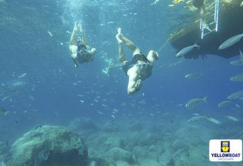 Snorkeling Puerto de Mogan